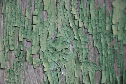 green texture III by mimose-stock