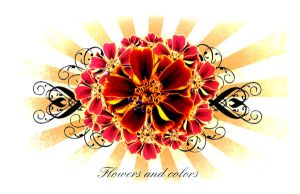 Flowers and colors Serie 03 by villanitadesign