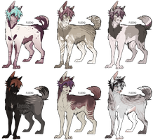 SEMI-NATURAL CANINES|ADOPTS-OPEN! by Kaysa99