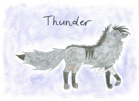 Thunder, Character Sheet by BlackHorse9