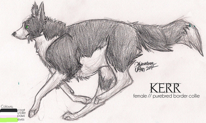 Kerr by winterlocked