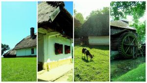 on the land of hungary by MiLExiS
