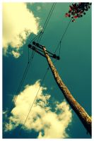 Wires by Mart1-designs