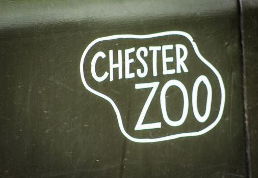 Chester Zoo by funknhell