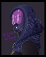 Tali'Zorah Vas Normandy by ellestril