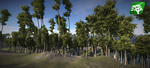 Realistic Tree7 by RakshiGames
