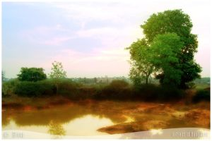 Outskirt of Bangalore by comparsian