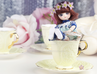 flower princess in the cup by shakabet