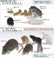 Rats for MMD by narutoxbase