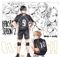 [Haikyuu!!] season 2 by a-zebra-was-here