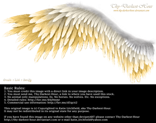 Winged Perfection - Silver-Gold by Thy-Darkest-Hour