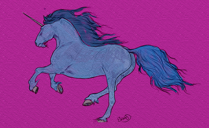 Unicorn by harenm