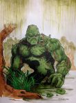 Swampthing Pittsburgh Comicon 2014 by DKHindelang
