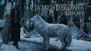 Game of Thrones Wallpaper by loctor