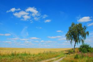 under the big sky by Wilithin