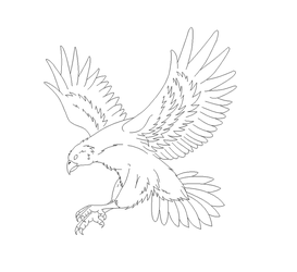 Falcon lineart by DinoGirl500