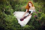 red violin by hordulf