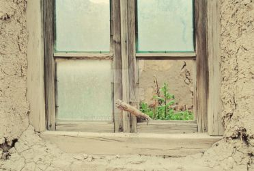 window inside by smammadova