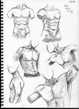 male torso study by theDeathspell