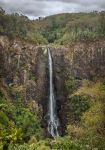 Ellenborough Falls by TarJakArt