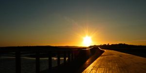 Path to the Sun by Sonia-Rebelo