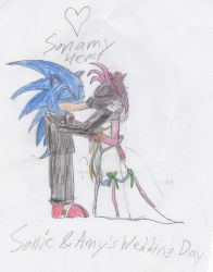 Sonic and Amy's Wedding Day by kaburninator