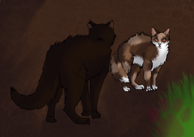 .:Warriors:. Just before Spottedleaf died by MichelleTheCat