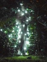 St Francis Christmas LED lights by stardust4ever
