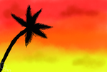 Palm and a Sky by Wolf--Prime