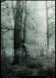 Lost Souls Forver.... by CuriousElk