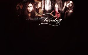 the-vampire diaries 1 by mia47