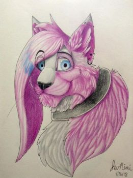 InuMimi in Colored Pencils by InuMimi