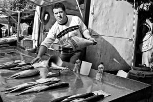 The fish seller by StamatisGR