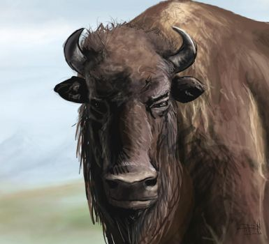 Buffalo Speed paint by Knights-End