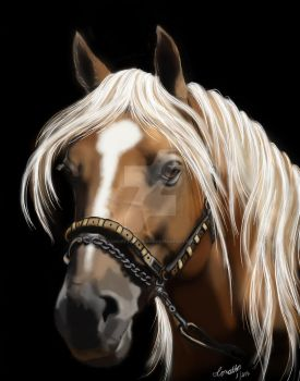 The Palomino by concettasdesigns