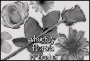Florals brush set by shoe-fly
