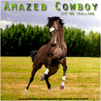 Amazed Cowboy EPP WB Stallion by Explicit18