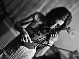 the violin by lllaurore