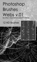Shades Webs v.01 HD Photoshop Brushes by shadedancer619