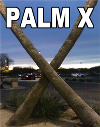 Palm X by thatguy621