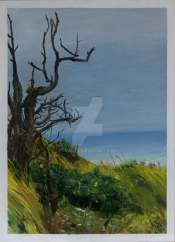 01-Landscape-Nature-Oil Painting by Csaba Tibor Pa by C5aba