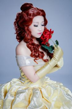 Beauty and the Beast - The Rose by MonicaWos