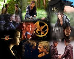 Hunger Games Montage by Flame-Libra