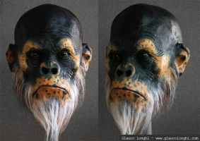 Ape's head finished by glaucolonghi