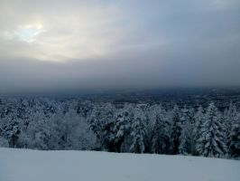 Oslo Winter, view from Grefsenkollen. by bernardojr