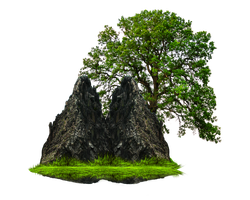 Png Rock And Tree by Moonglowlilly