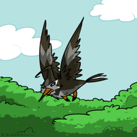 The Starling Pokemon: Staravia by Waltonsaurus