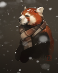 first snow_gif by GaudiBuendia