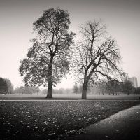 Hyde Park by Jez92