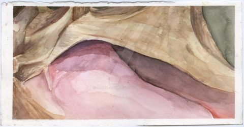 The Conch (Watercolor) by Saber-Cow